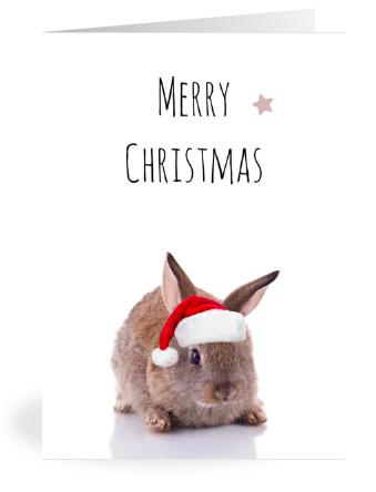Umstrittenes Weihnachtsfest bekommt anderen Dreh