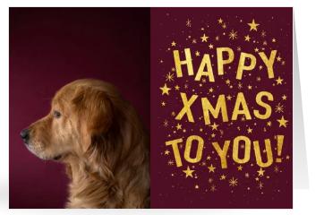 Motive für Weihnachtskarten